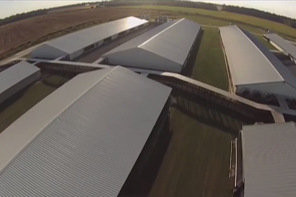Drones Reveal Shocking Aerial Views Of Factory Farms