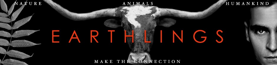 Earthlings - Make The Connection